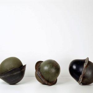 Seeds, 1993